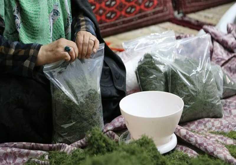 تولید سبزی های خشک